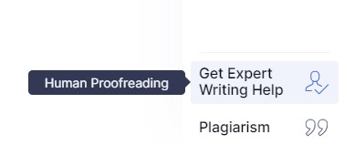 Grammarly snapshot with the focus on the Get Expert Writing Help button in the software